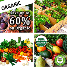 Ivan Stein - Foundation For Sustainable Living - Heavenly Farms Organic Food Co-op